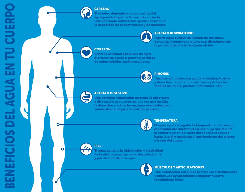 Beneficios del agua mineral natural en tu cuerpo