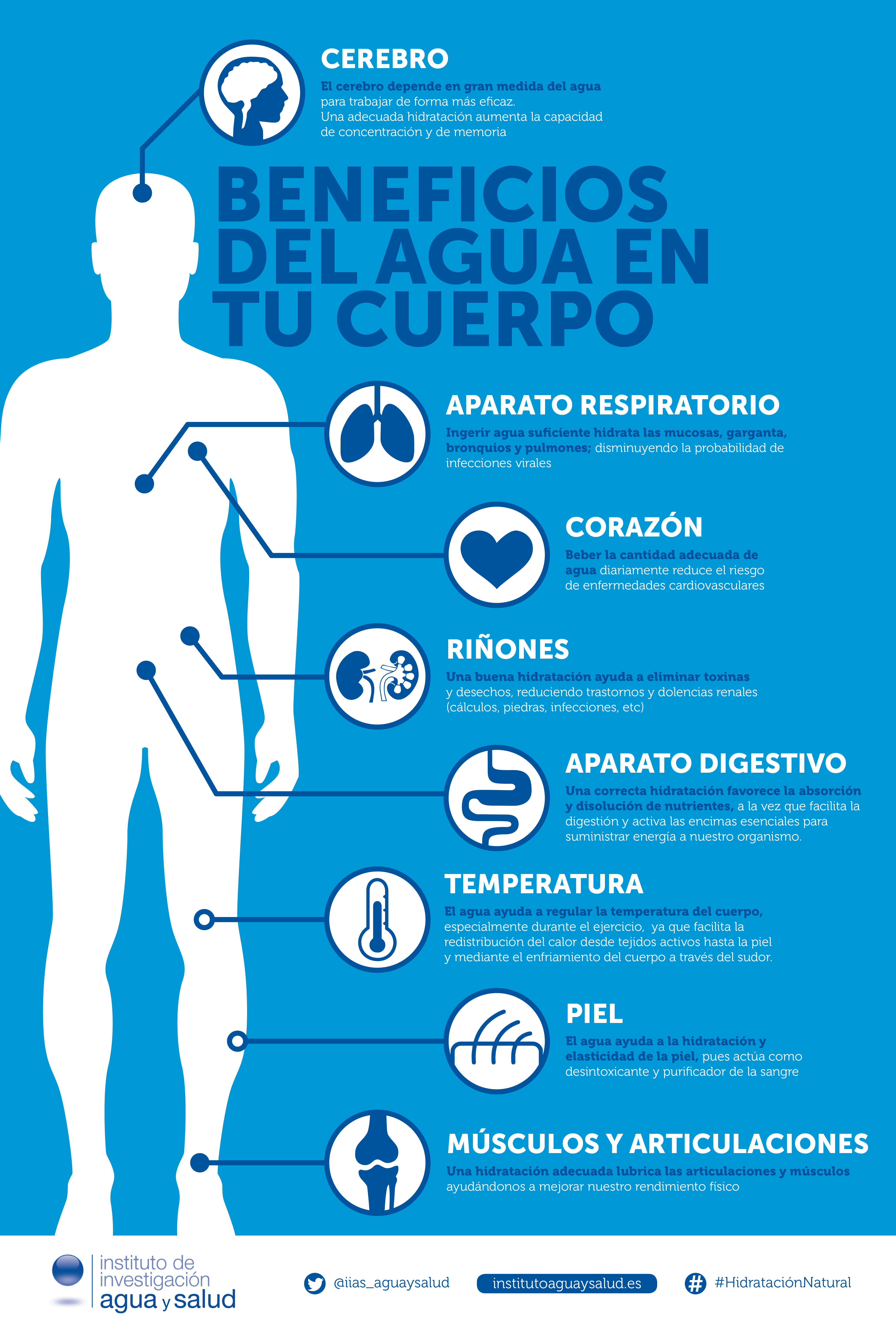 Beneficios De Beber Agua